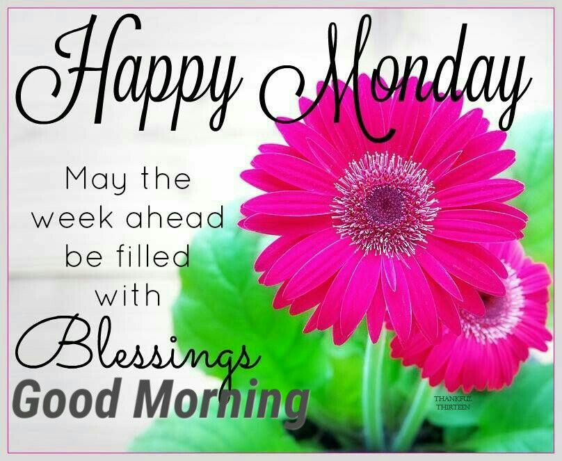 pin by sarjit on good morning quotes ☕ happy monday quotes