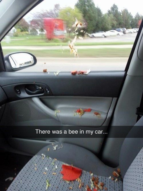 Or have to deal with a carbee is part of Snapchat funny - It can always be worse