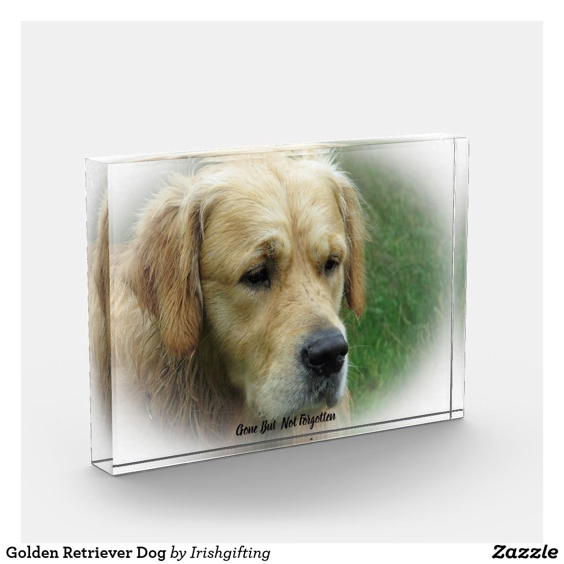 Golden Retriever Dog Acrylic Award Zazzle Co Uk Dogs Golden Retriever Golden Retriever My Pet Dog
