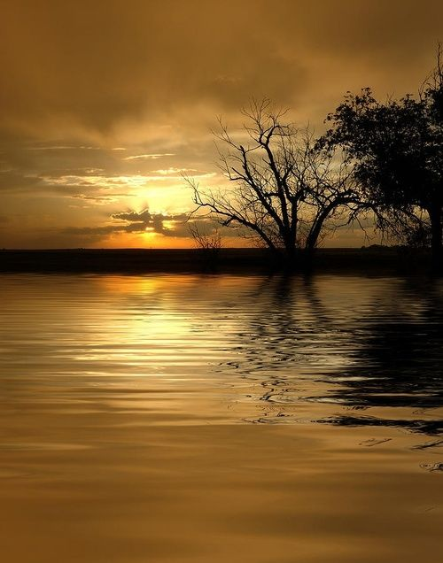 3 Sunset Sunrise Clouds Trees Water Reflection Sunbeams Beauty Of Nature Peaceful Silence Photo Pictures Beautiful World Photo