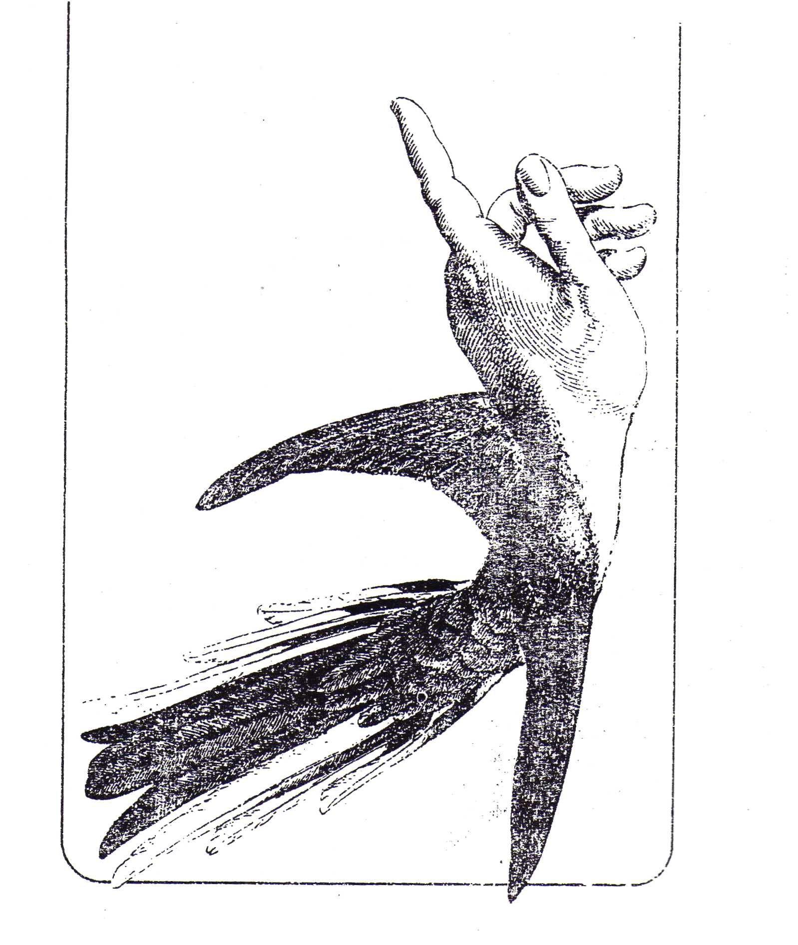 El Libro De Los Abrazos Eduardo Galeano Ilustraciones Tatoo Abrazos