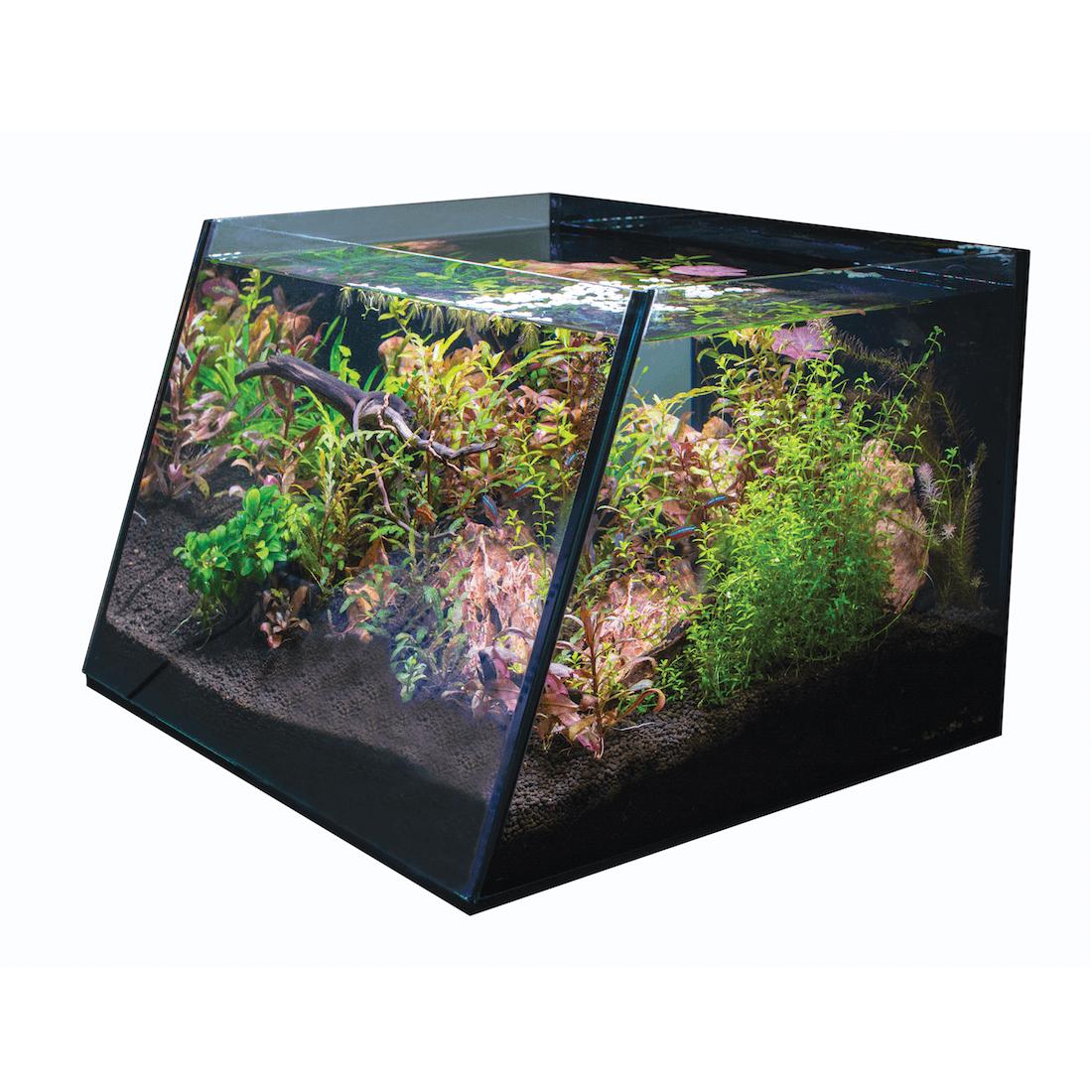 Full View Aquarium Basic Program Three 5 Gal R800202 By Lifegard Aquatics Aquatics Pro 5 Gallon Aquarium Aquatic Aquarium