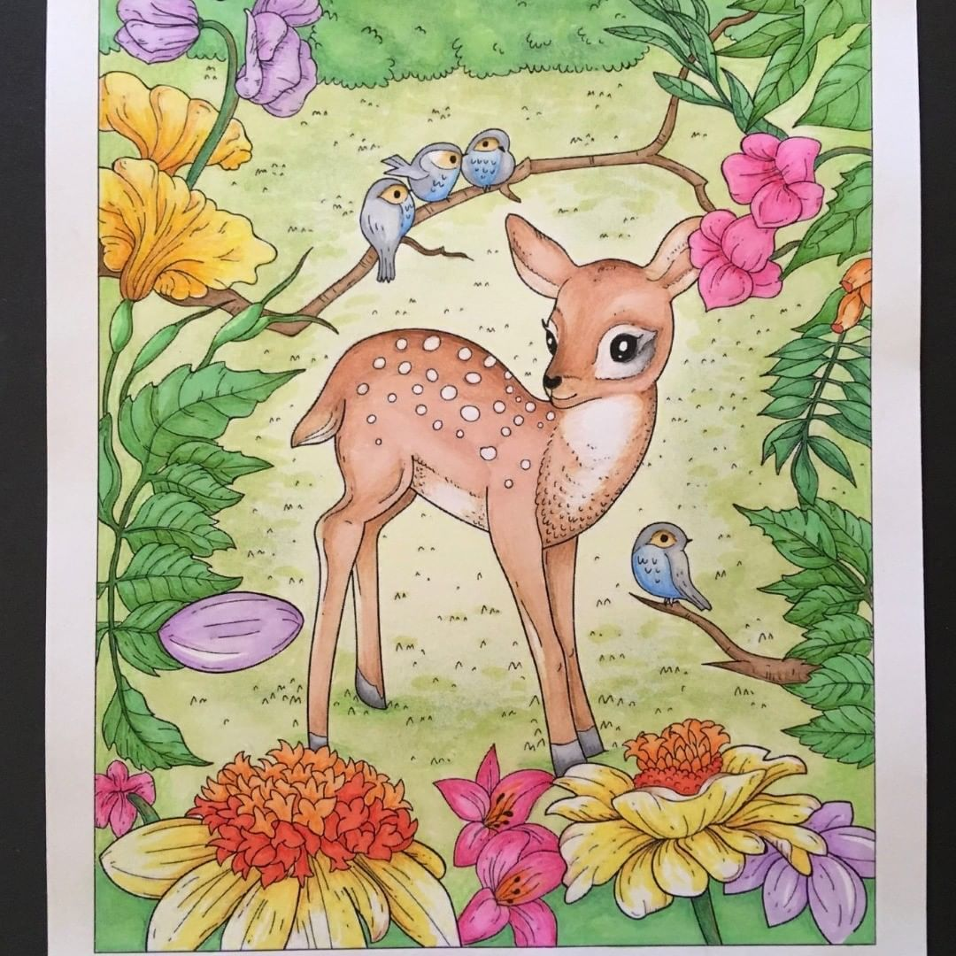 151 Mentions J Aime 2 Commentaires Coloring Book Cafe Coloringbookcafe Sur Instagram Absolutely Beautiful Pencil Coloring Books Book Cafe Baby Animals