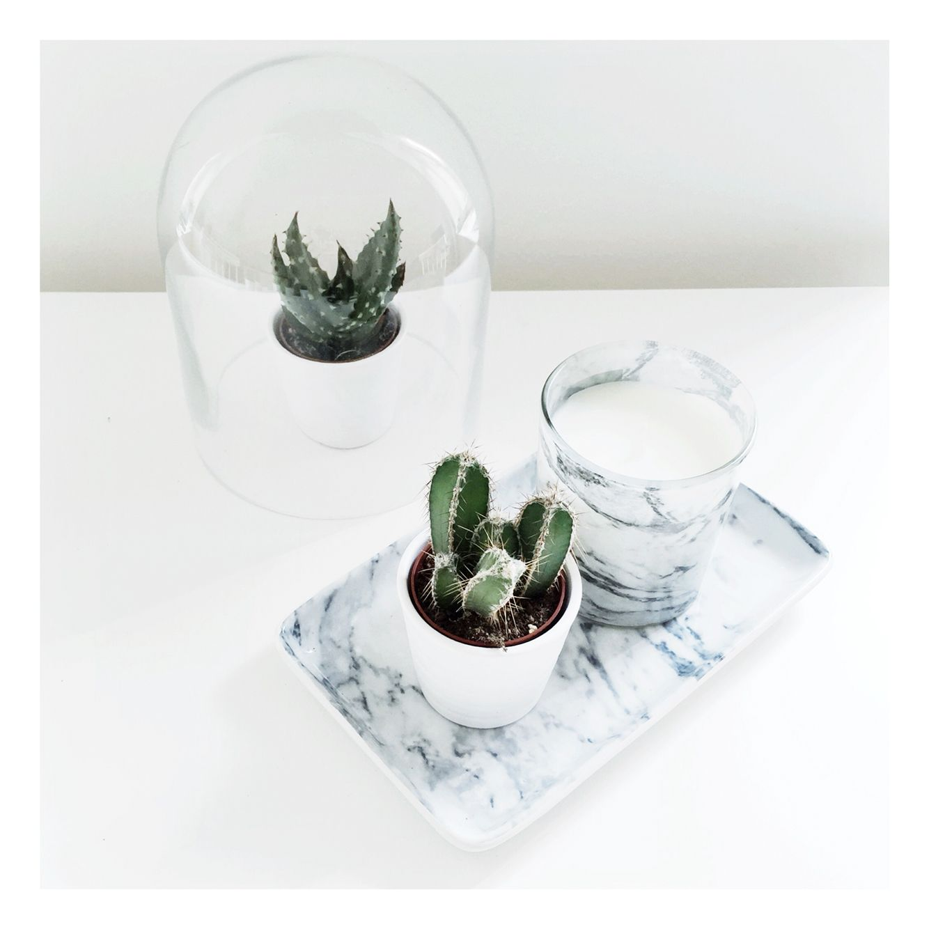 marble & cactus home decor www.noanoir | interior | pinterest