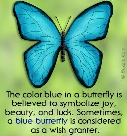 The Yellow Wallpaper Symbolism Quotes What S The Meaning Of A Blue Butterfly And What Does It
