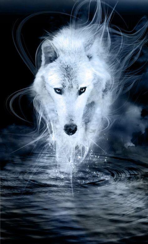 ghost - Alexandra Stanek