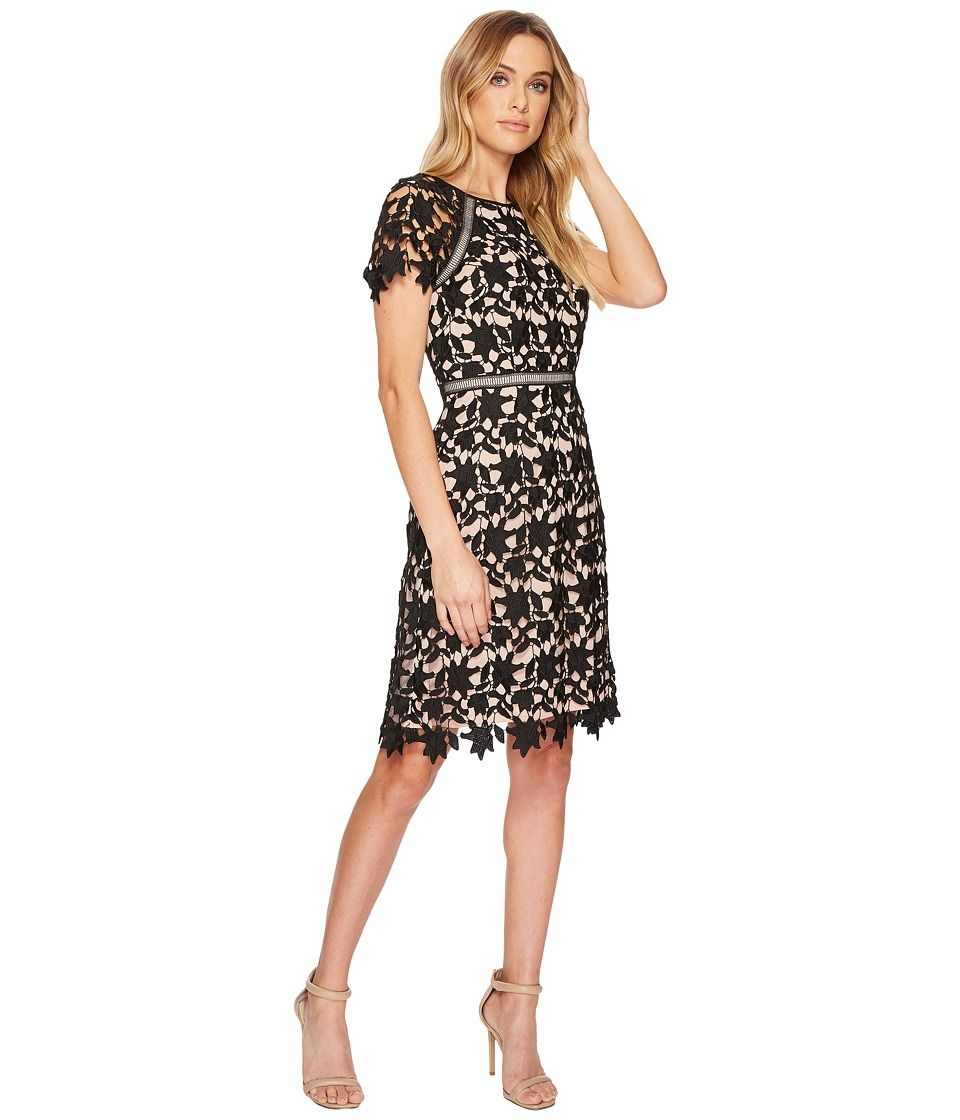 Adrianna Papell Ava Lace Trimmed A Line Dress Womens Dress