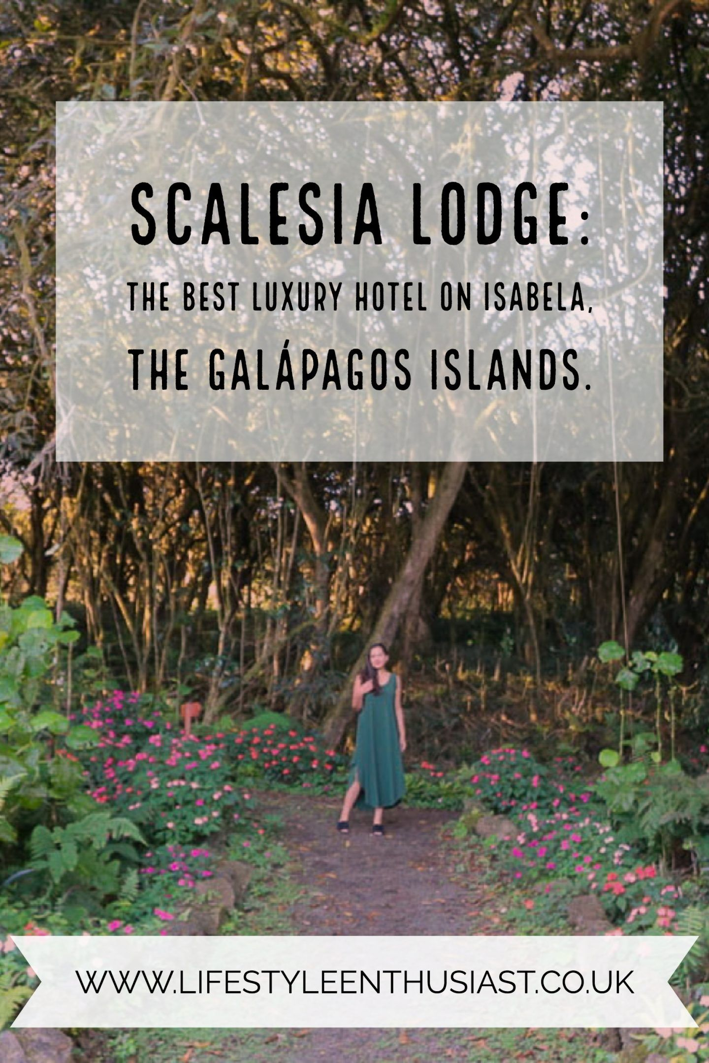 Scalesia Galapagos Lodge The Boutique Luxury Hotel On