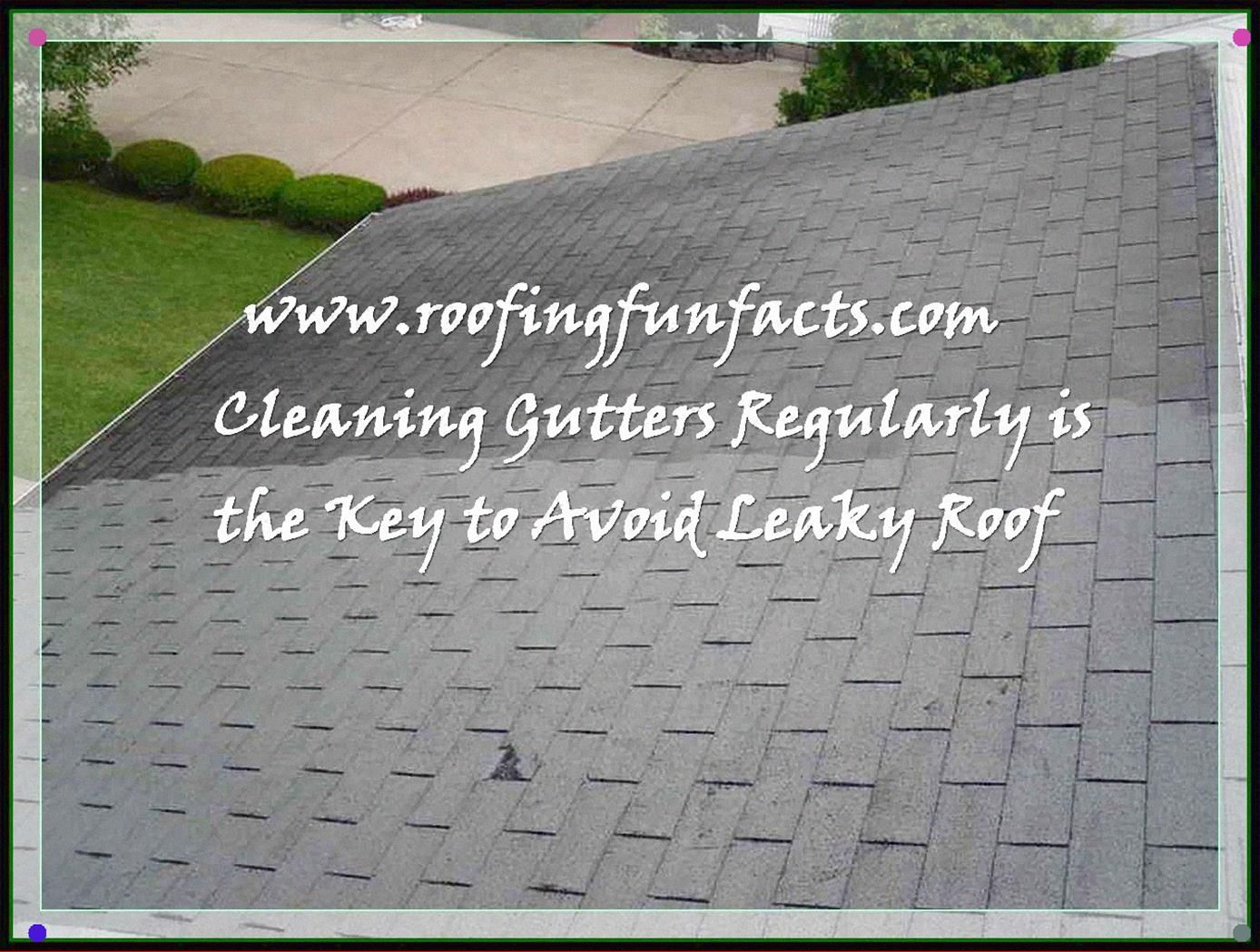 Fun Facts Of Roofing You Ought To Know Read More At The Image Link Rooftopgardeningfacts Rooftop Garden House Plant Care Gardening Techniques