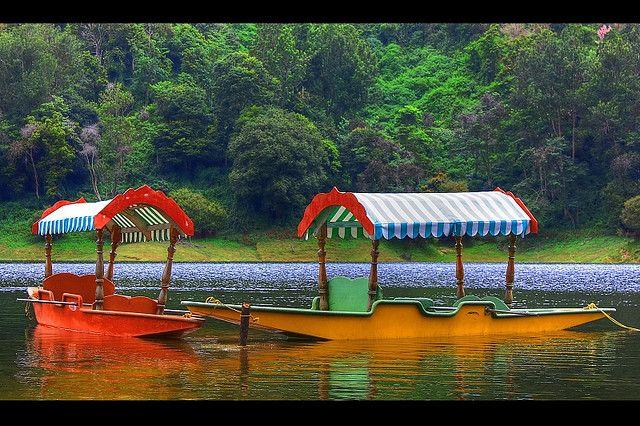 Munnar, Kerala - Doorway to Heaven