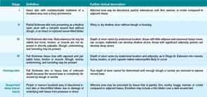How Should Physicians Assess And Manage Pressure Ulcers In The