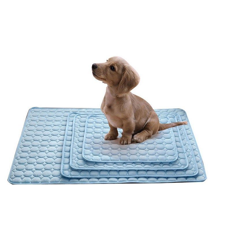 Home Page Dog pet beds, Dog cooling mat, Cool dog beds