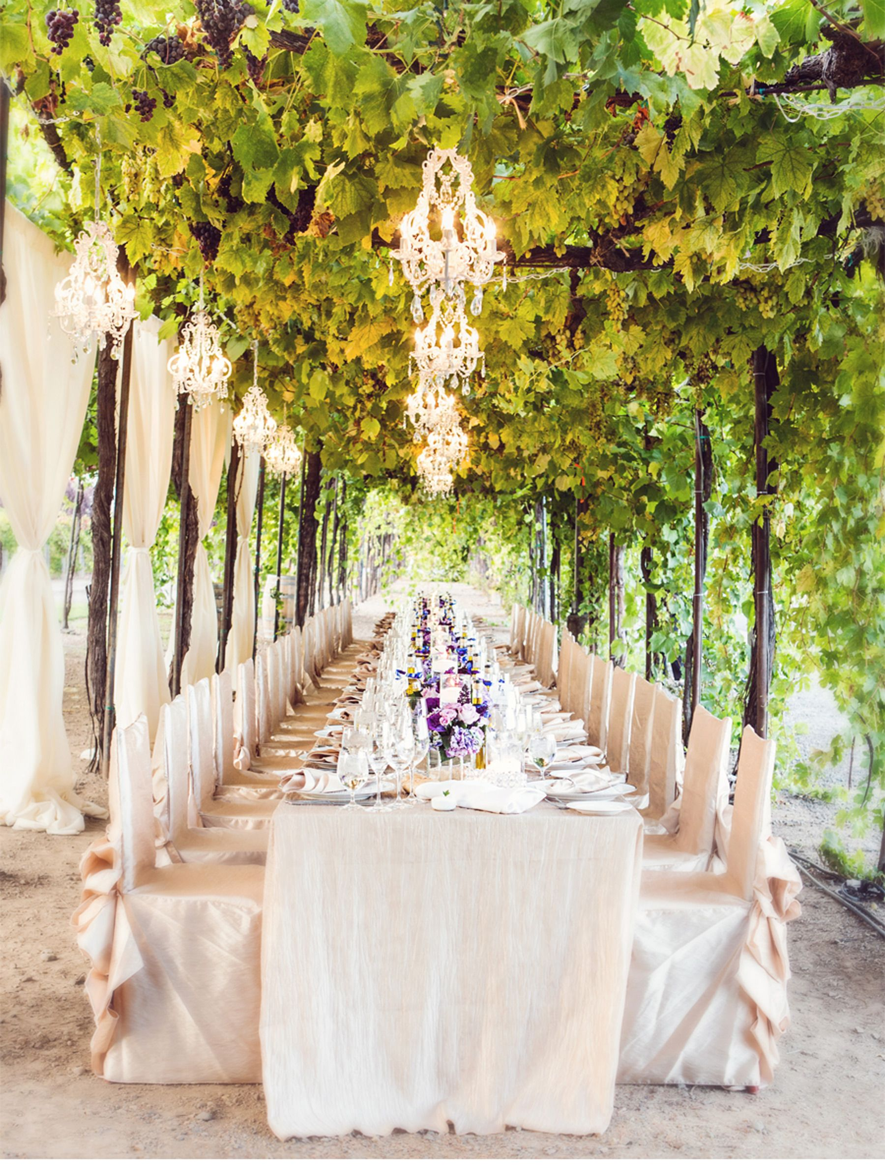 17 Creative Ideas For Planning A Romantic Winery Wedding Winery