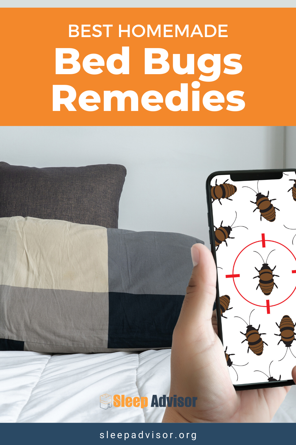 Homemade Bed Bug Remedies How to Repel and Get Rid of