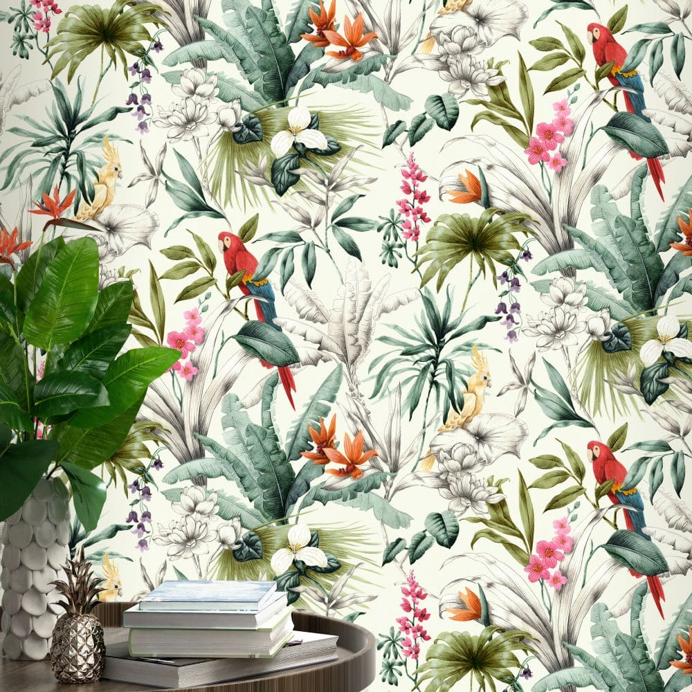 Bird Of Paradise By Accessorize Multi Coloured Wallpaper Wallpaper Direct Paradise Wallpaper Tropical Wallpaper Colorful Wallpaper