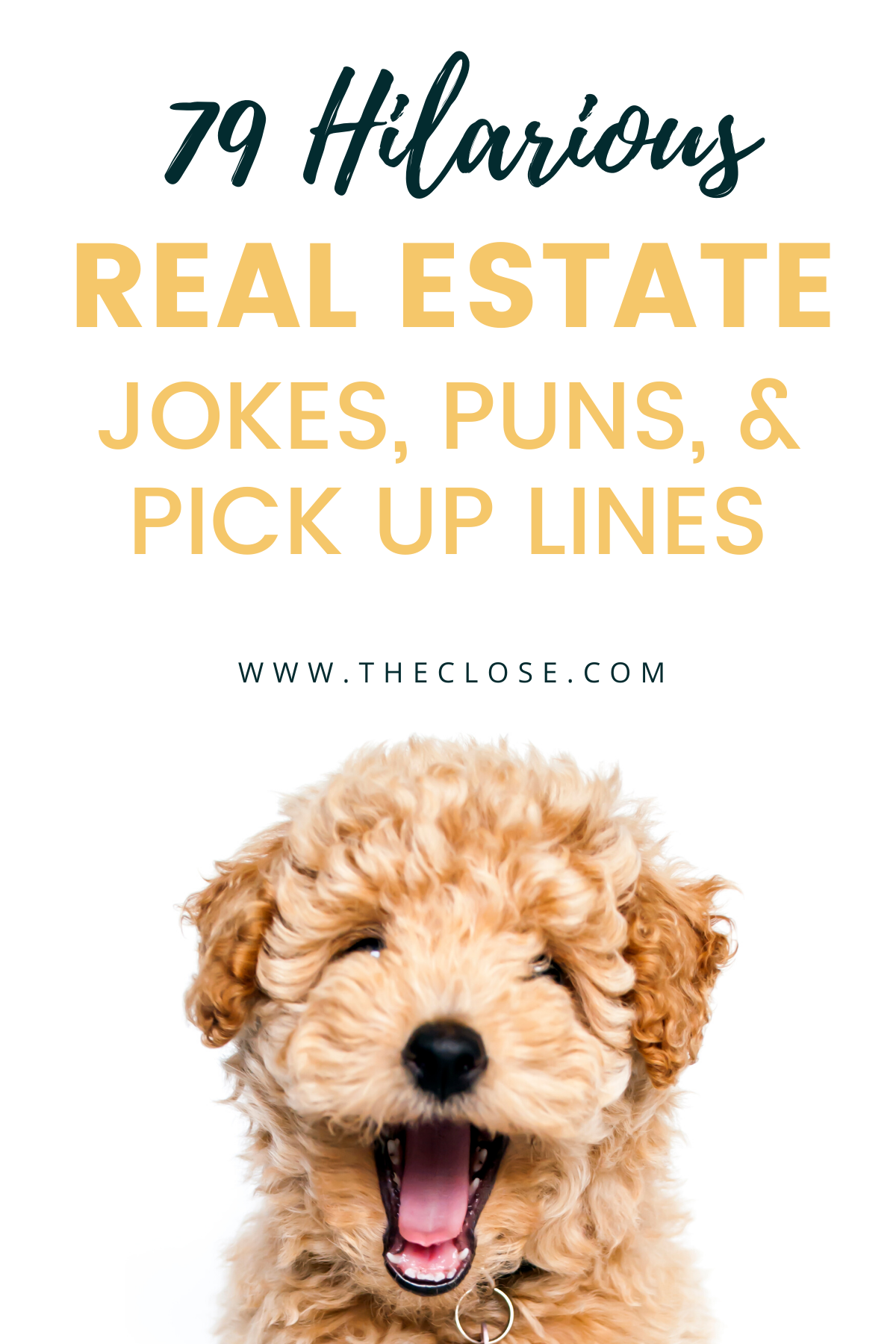 79 Hilarious Real Estate Jokes, Puns, & Pick Up Li
