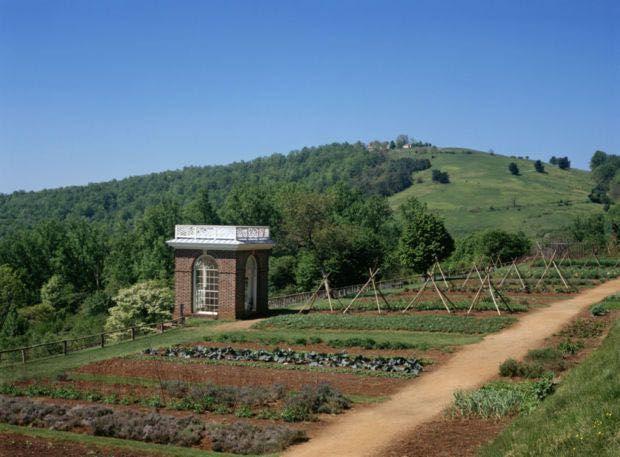 7 Tips for a Stunning Flower Garden | Thomas Jefferson's ...  |Thomas Jefferson Garden Seeds
