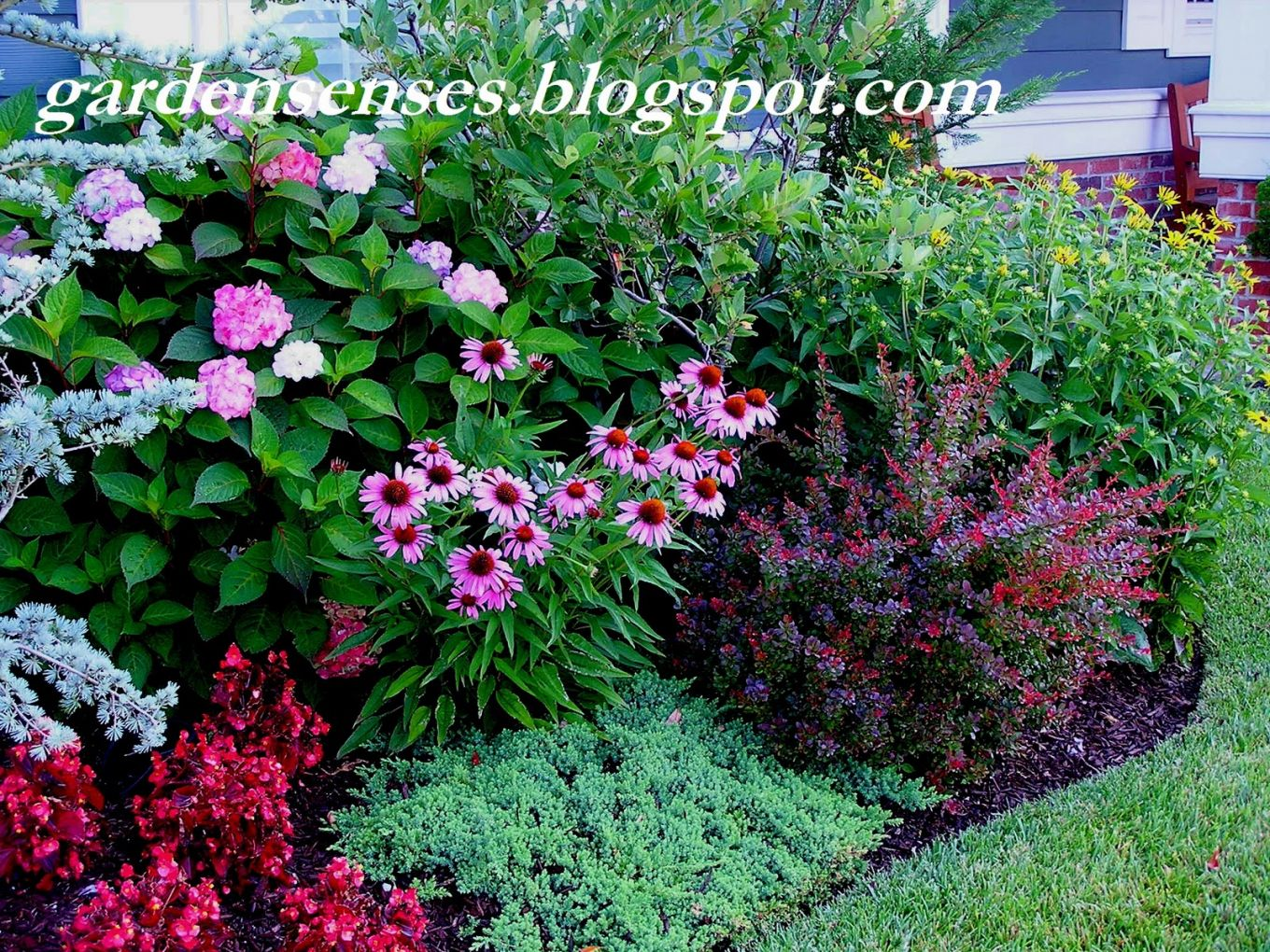 Layering Of Plants In Flower Beds