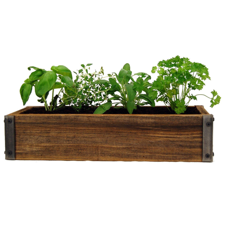 Reclaimed barnwood planter culinary herb garden kit grow basil decor daydream 1 reclaimed barnwood planter culinary herb garden kit grow basil workwithnaturefo