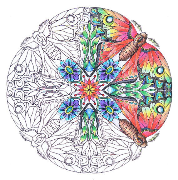 mandalas transformation themed set of coloring pages for adults