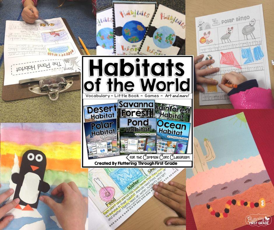 Habitats of the world. Polar, pond, rain forest, desert, savannah, forest, ocean...Art, reading, writing, science.