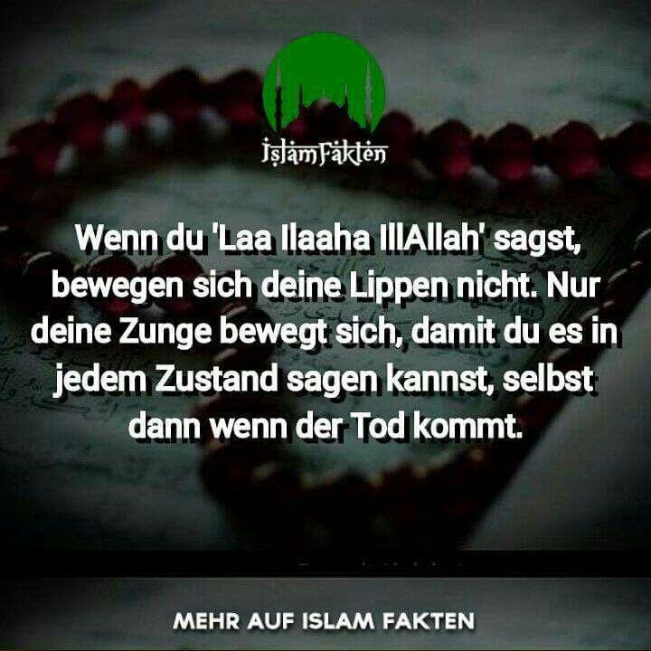 Pin Von Ali Serdar Auf Islam اسلام Freundschaft Zitate Zitate Religiose Zitate