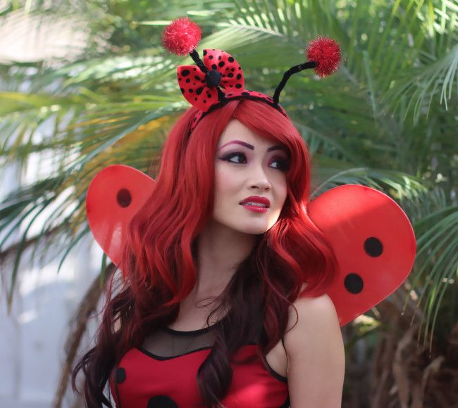 Diy ladybug costume dessert ideas pinterest ladybug costume diy ladybug costume solutioingenieria Image collections