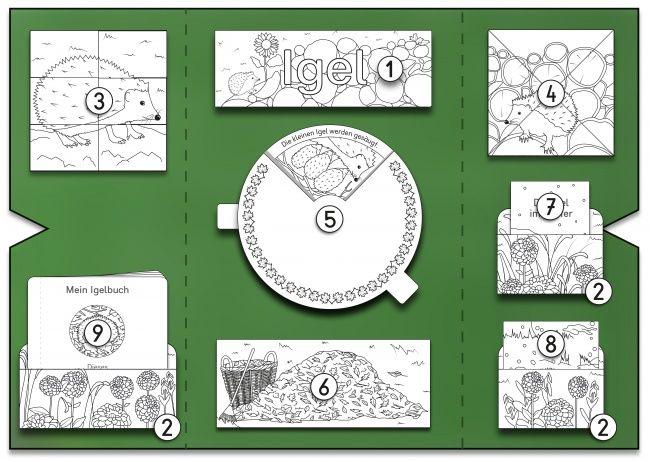 sw 00 kigaportal kindergarten lapbook mini lapbook. Black Bedroom Furniture Sets. Home Design Ideas