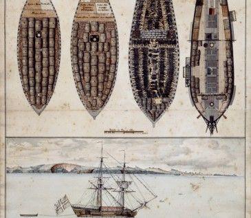Plan, profil et distribution du navire La Marie Séraphique de Nantes, armé par Mr Gruel, pour Angole, sous le commandement de Gaugy, qui a traité à Loangue, dont la vue est cy-dessous la quantité de 307 captifs (...)