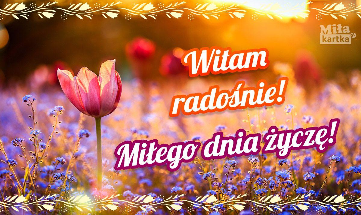 Witam Radosnie Milego Dnia With Images Cytaty Na Dzien Dobry