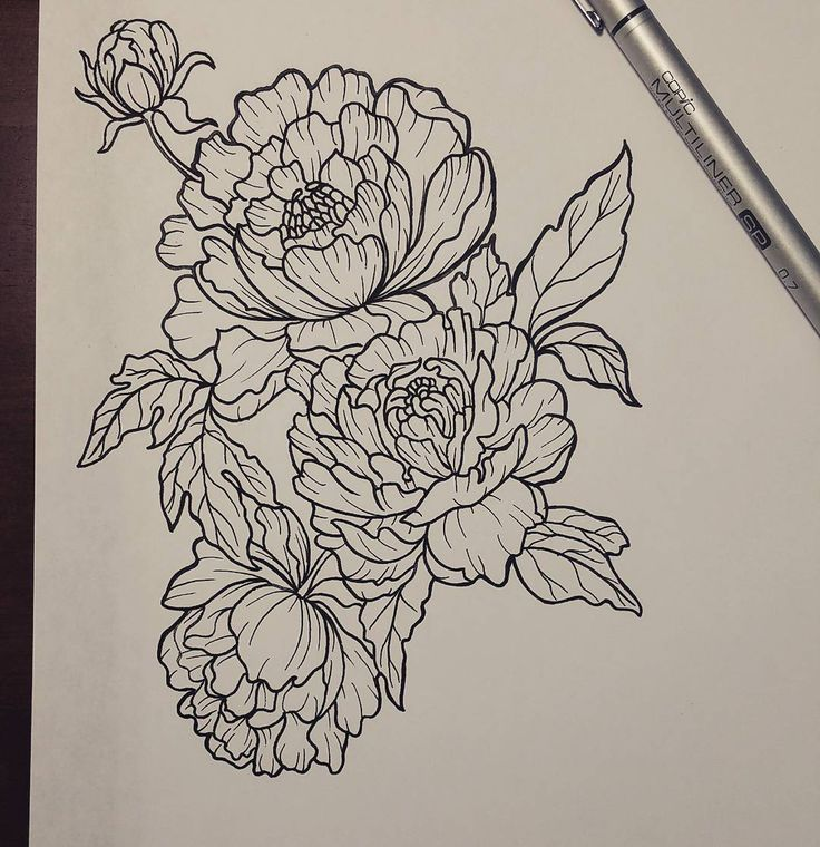 Line Drawing Instagram : Tatto ideas instagram photo by cognitronic jun