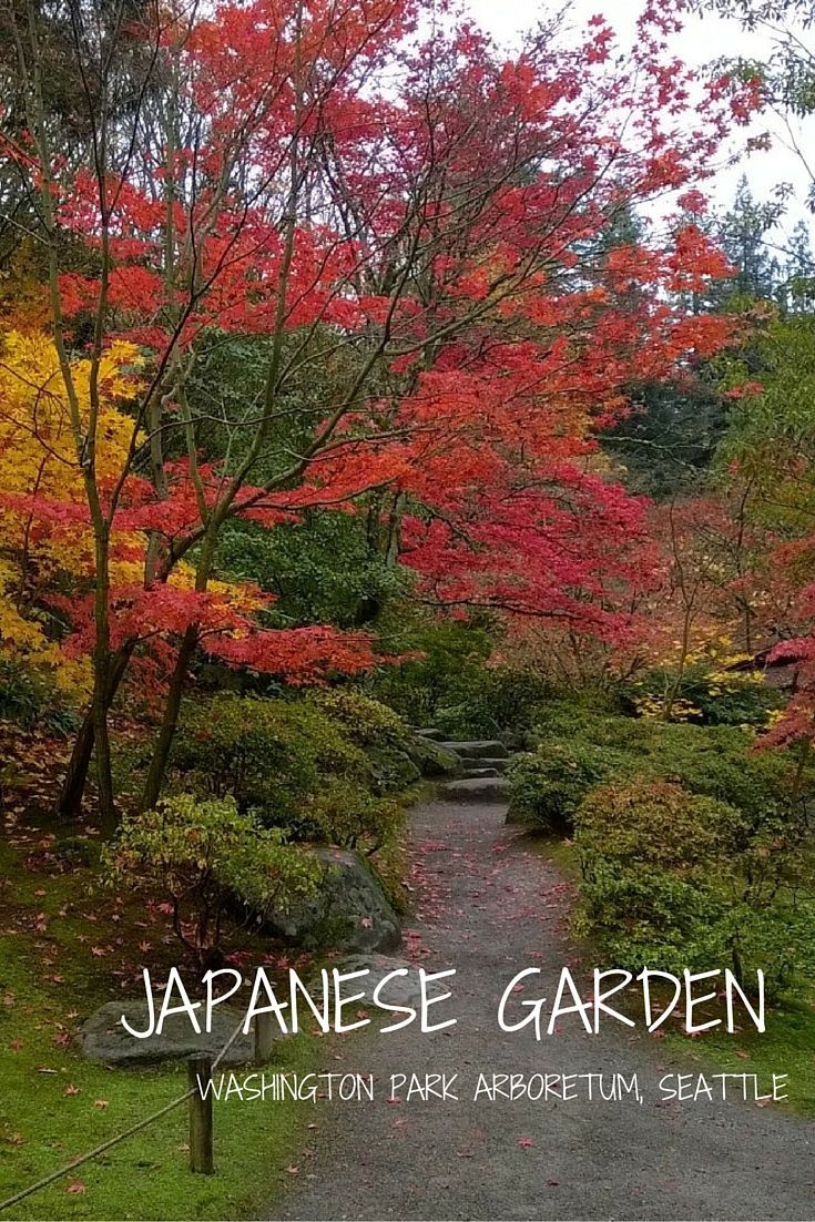 Japanese Garden Seattle japanese garden, Seattle travel