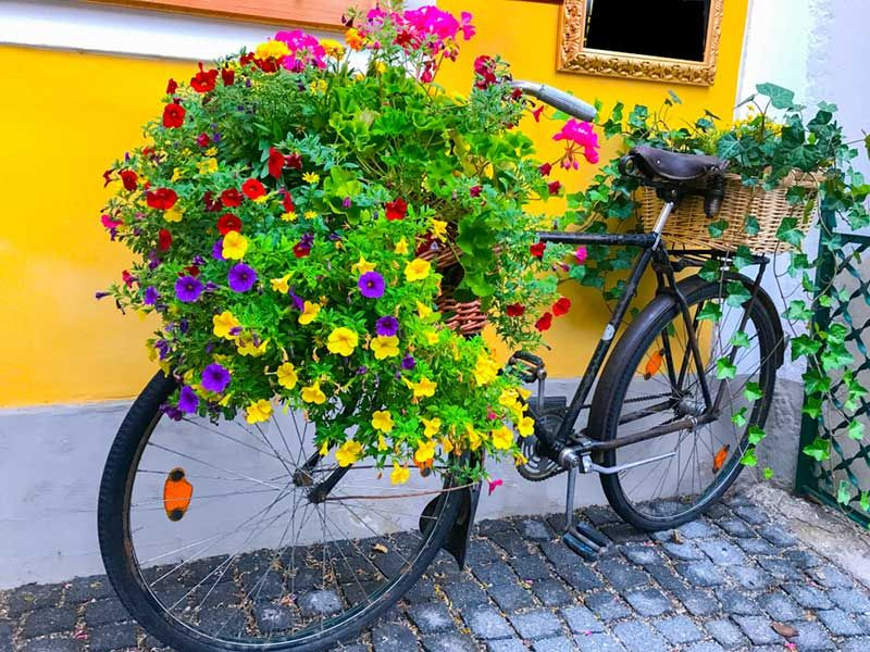 30 Mind Blowing Bicycle Planter Ideas For Your Garden Or 640 x 480