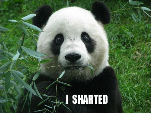 funny bear pictures | ... to quit hoggin' all the pandas ...