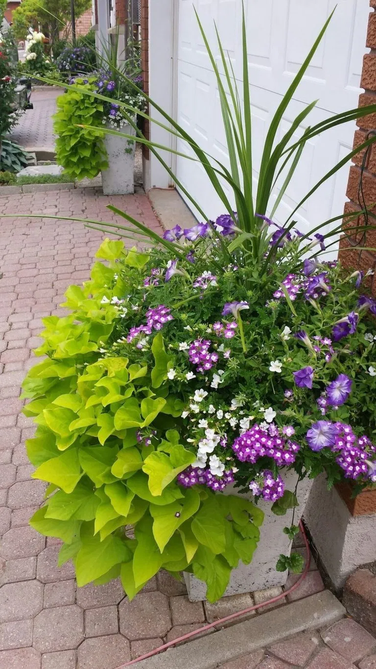 78 Simple Front Yard Landscaping Ideas With Low ...