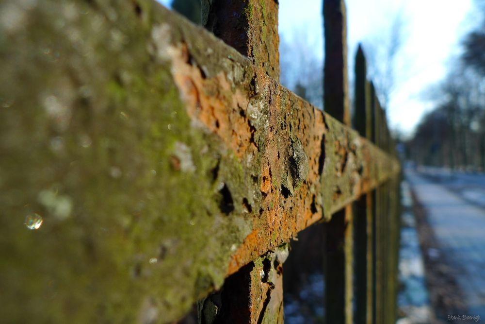Rostiger Zaun Rusty Fence Fotografie Pinterest Photography
