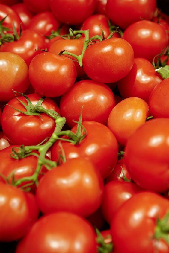Tomate Gesund