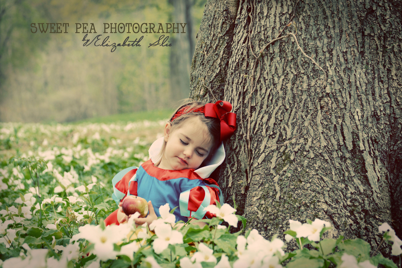 Snow White Fairy Tale Photo shoot. Toddler Girl Photo ... Toddler Girl Photography Ideas
