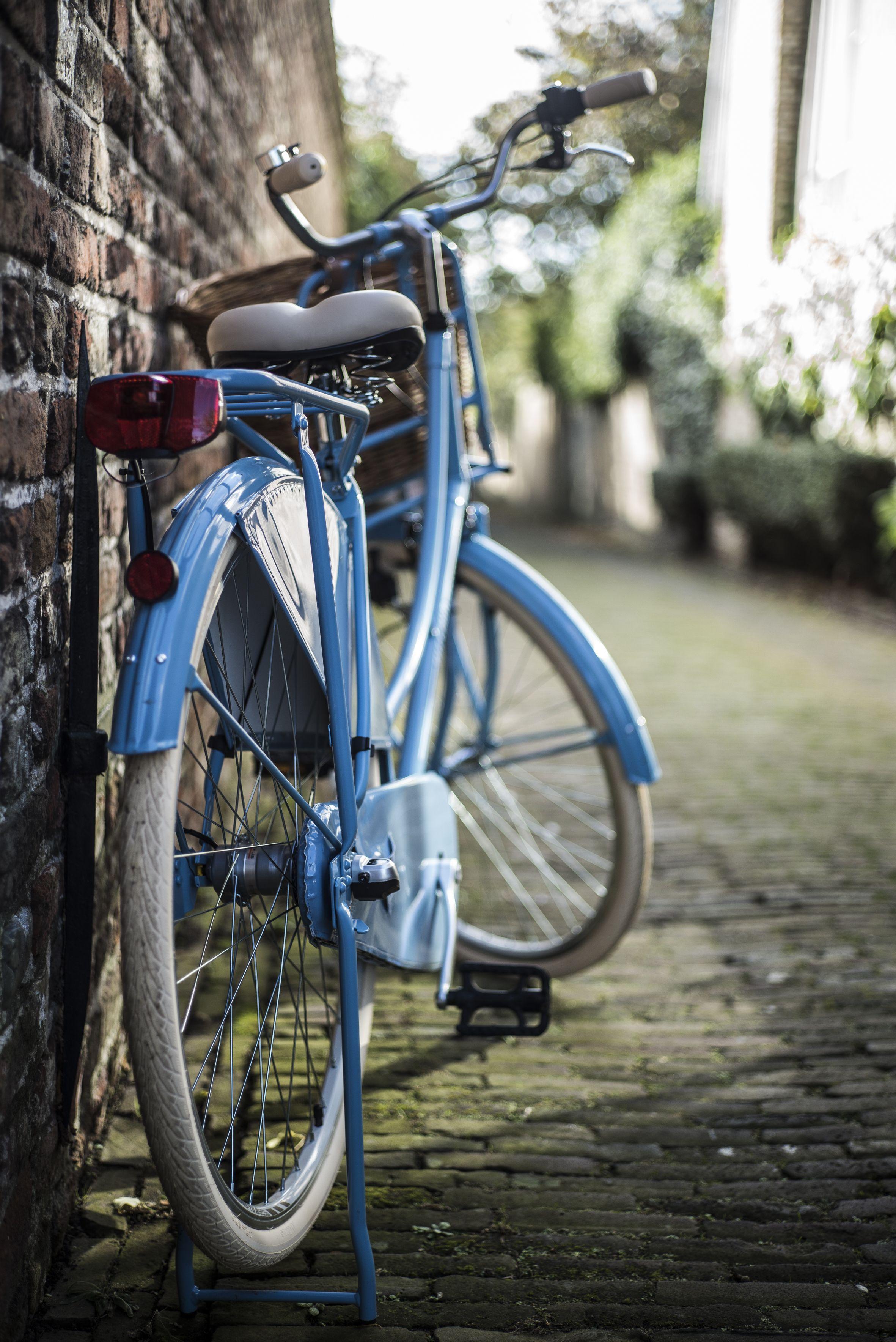 ks cycling cityrad tussaud 3 gang shimano nexus schaltwerk nabenschaltung auf rechnung. Black Bedroom Furniture Sets. Home Design Ideas