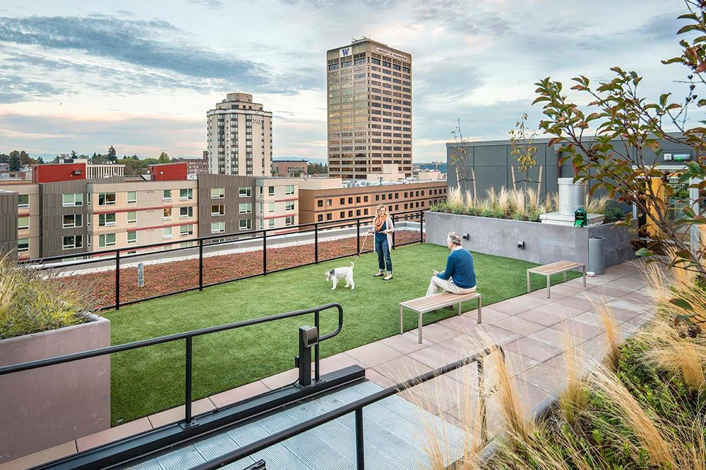 Pawesome 4 Pet Friendly Apartments For Rent Real Estate 101 Trulia Blog Pet Friendly Apartments Apartment Dogs Dog Spa