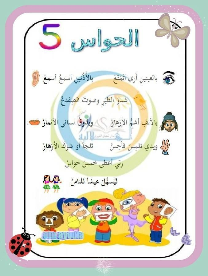 انشودة الحواس الخمس Learning Arabic Foreign Language Learning Learn Arabic Online