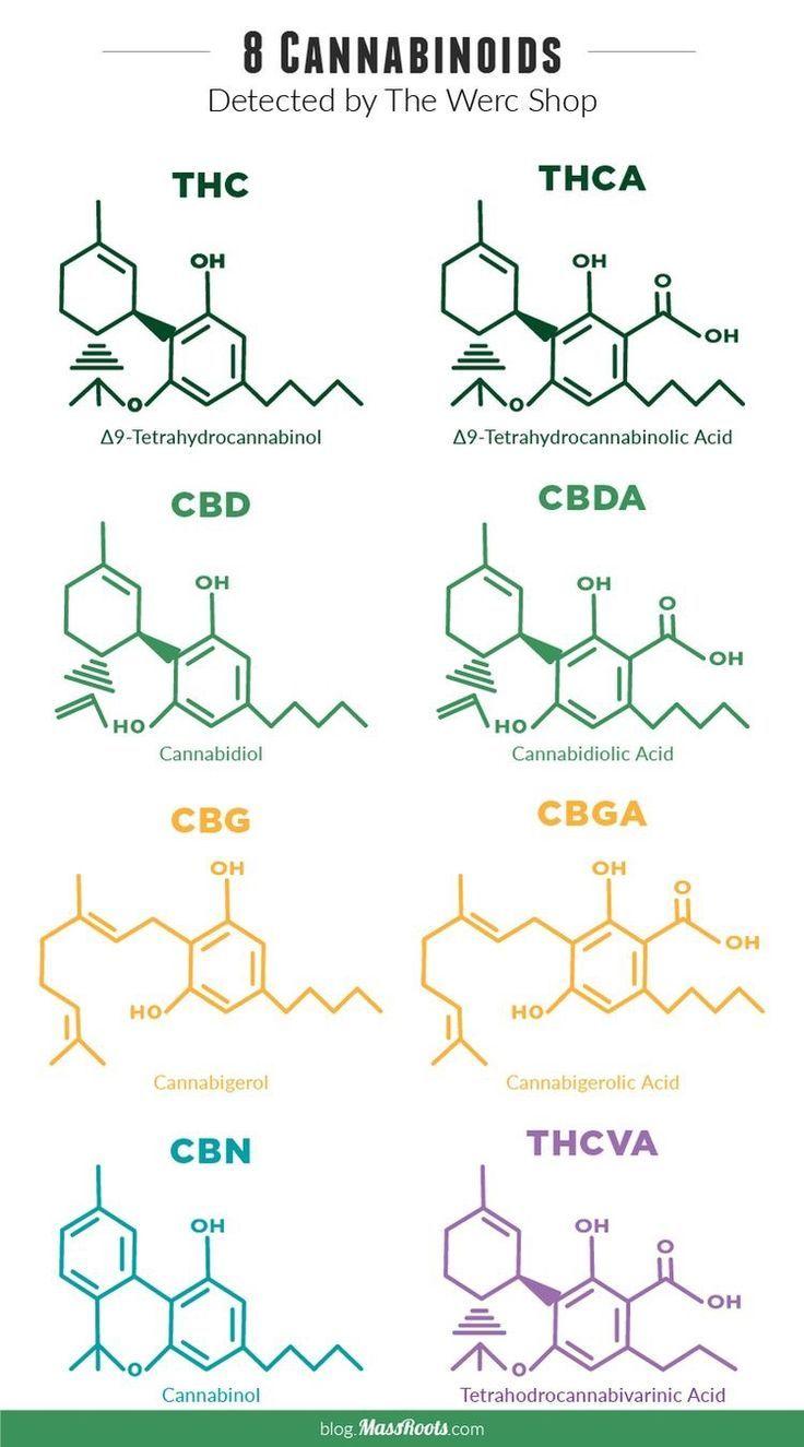 Photo of Delta-9-Tetrahydrocannabinol (THC), Delta-9-Tetrahydrocannabinolsäure (THCA), … – Bildung Ideen & DIY