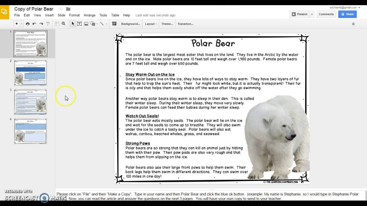 Arctic Animals Paperless Resource (An example of paperless journey)