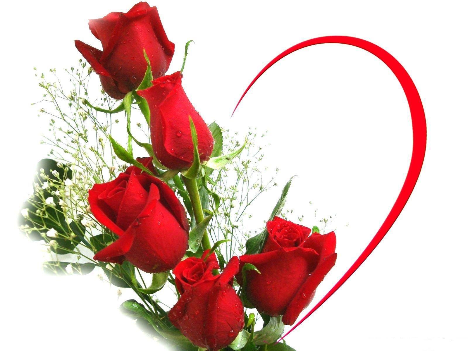 Pin By Wendy Sengstock On Coeur Love Red Roses Wallpaper Love Rose Flower Beautiful Love Flowers