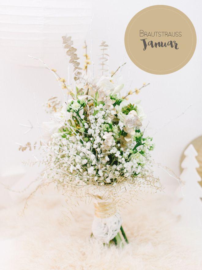 Brautraußgalerie Januar: Ein weißer Wintertraum | Blühende pflanzen ...