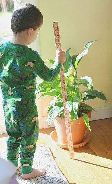 Photo of Math Activities for Preschoolers: Measurement Exploration Center