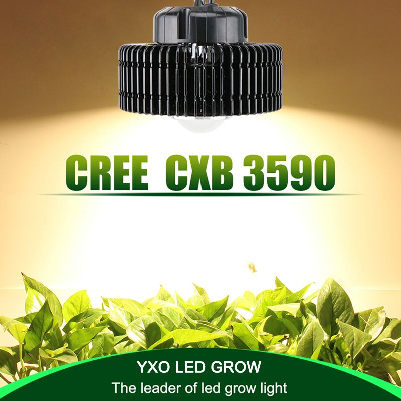100 Watt Cree Cxb3590 Cob Gesamte Spektrum Led Wachsen Licht Fur Gewachshauswasserkultur Innen Wachsen Zelt Kommerziellen Led Grow Lights Led Grow Grow Lights