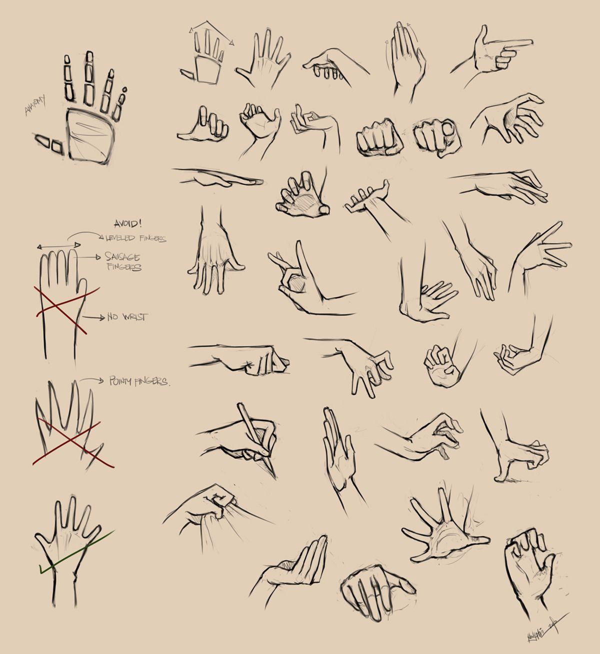 Art tutorials references drawings hand reference