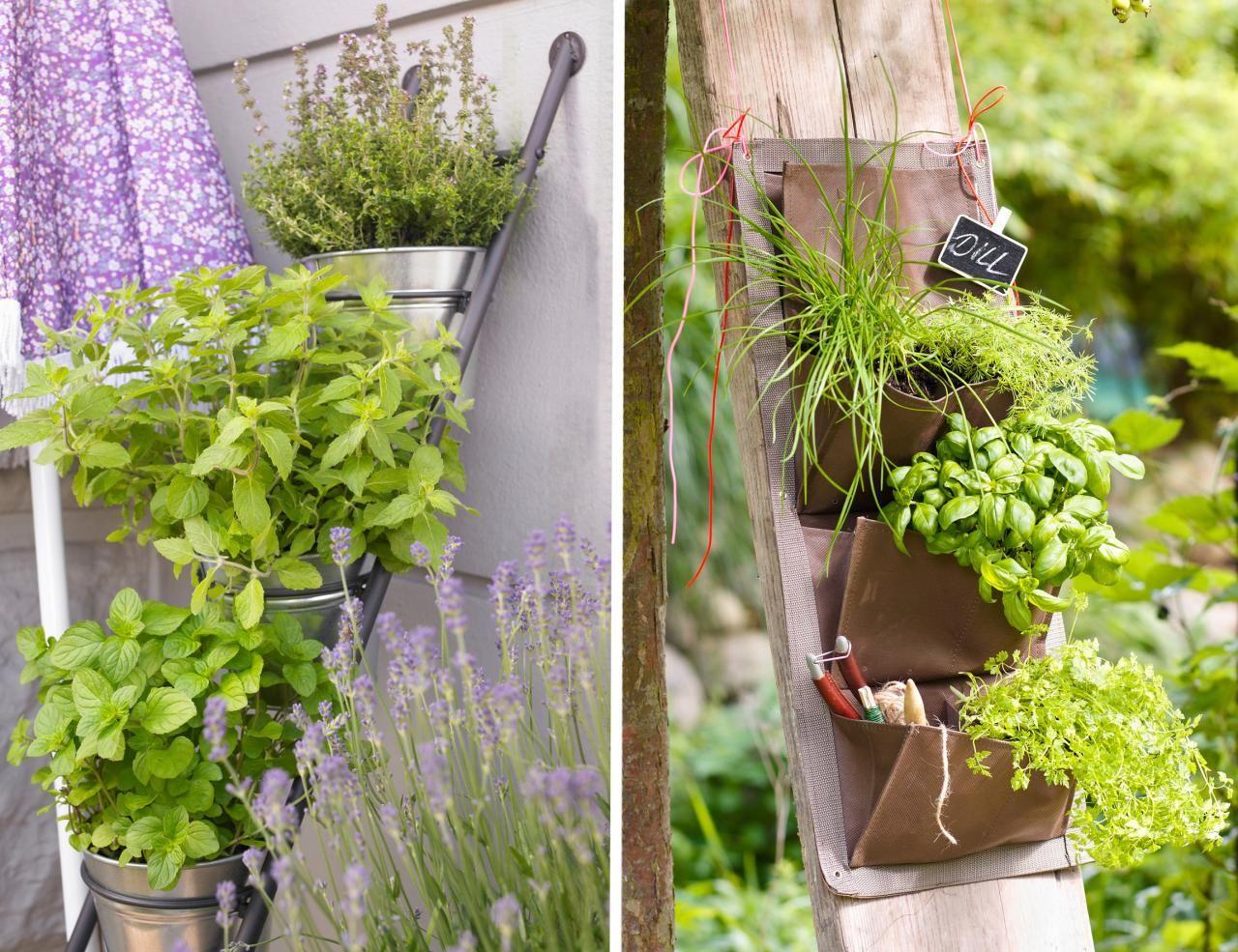 Die Schonsten Ideen Fur Zu Hause Krautergarten Anlegen Kleine Krautergarten Garten Pflanzen