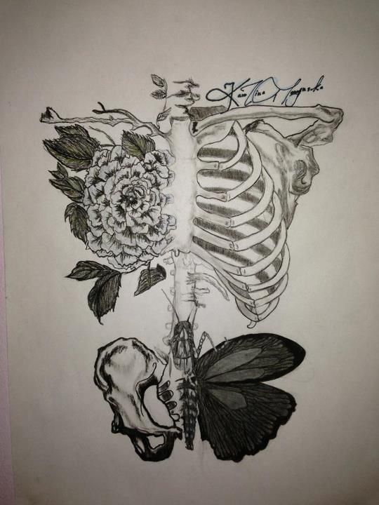 Rib Cage Drawing With Flowers : drawing, flowers, Flowers,, Hipster, Drawings,, Drawing,, Drawings